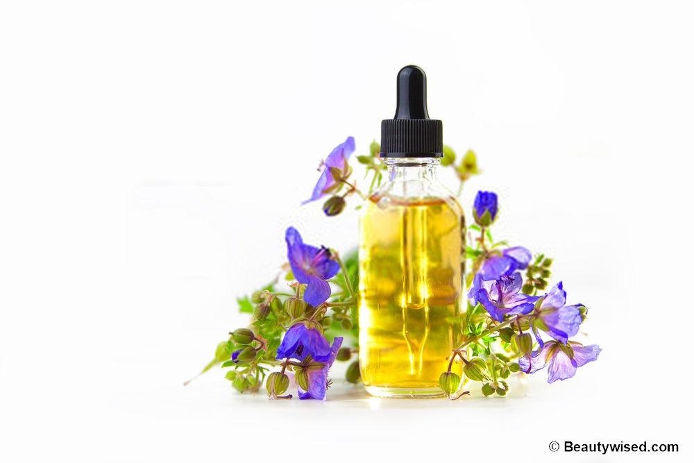 Essential oil trreatment for lice